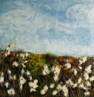 Bog Landscape